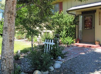 Dillon Single Family Home For Sale: 1141 Webster Lane