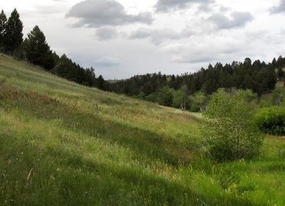 Boulder MT Residential Lots & Land For Sale: $99,900
