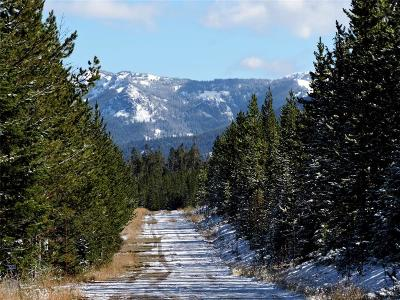 Big Sky MT Residential Lots & Land For Sale: $500,000