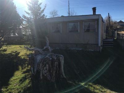 Dillon Single Family Home For Sale: 572 Barnett Avenue