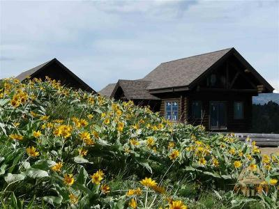 Bozeman Single Family Home For Sale: 1947 Rising Spirit Road