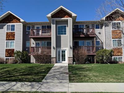 Bozeman Condo/Townhouse For Sale: 3505 Fallon Street #C 31