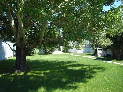 Livingston Single Family Home For Sale: 118 N E Street