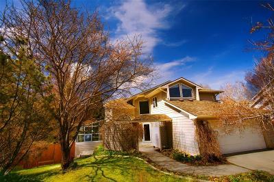 Helena Single Family Home For Sale: 2101 Turmaline Court