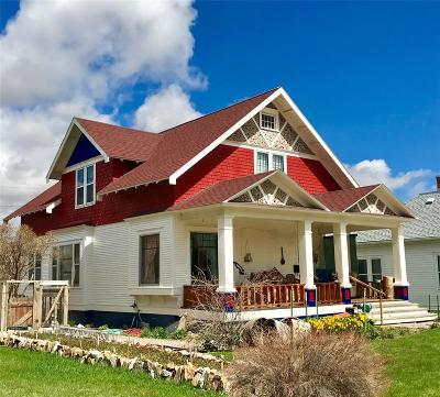 Dillon Single Family Home For Sale: 923 S Washington Street