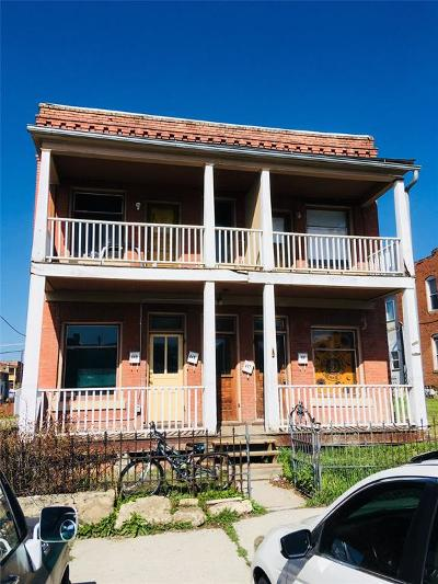 Butte Multi Family Home For Sale: 647-649 S Idaho Street