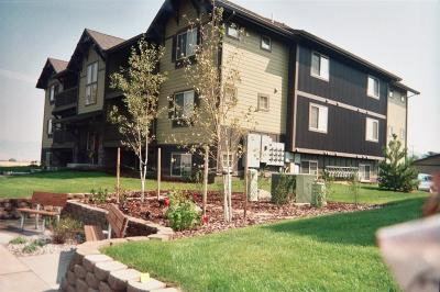 Bozeman Condo/Townhouse For Sale: 4615 Bembrick Street #2D