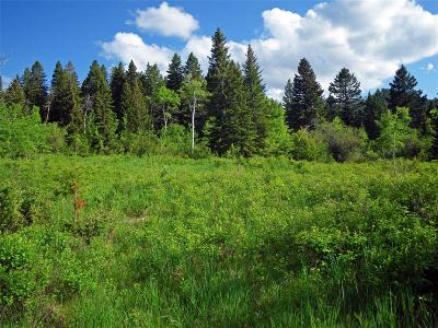 Gallatin Gateway MT Residential Lots & Land For Sale: $575,000