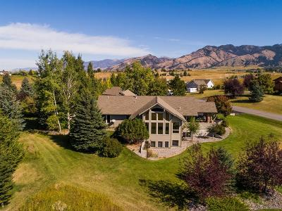 Bozeman Single Family Home For Sale: 3090 Ranch