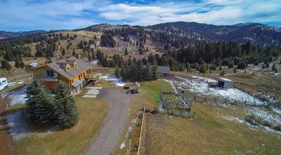 Bozeman Single Family Home For Sale: 17500 Timberline Creek Drive