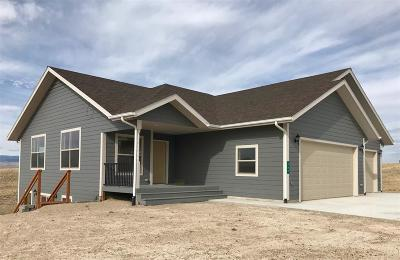 Dillon Single Family Home For Sale: 580 Sweetwater Estates Drive