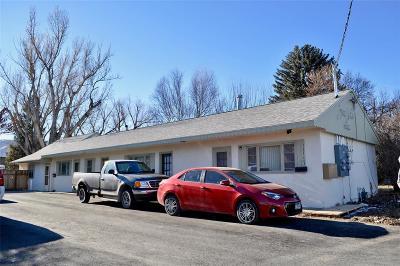 Livingston Multi Family Home For Sale: 1315 W Geyser St.