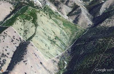 Bozeman Residential Lots & Land For Sale: Tbd Middle Cottonwood