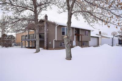 Belgrade Single Family Home For Sale: 908 Northern Pacific Avenue