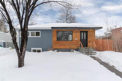 Bozeman Single Family Home For Sale: 305 S 12th Avenue