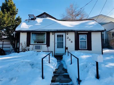 Butte Single Family Home For Sale: 238 Calhoun St.