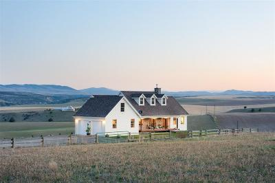 Belgrade Single Family Home For Sale: 1234 Theisen Ranch Road