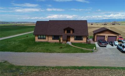 Bozeman Single Family Home For Sale: 110 Grey Wolf