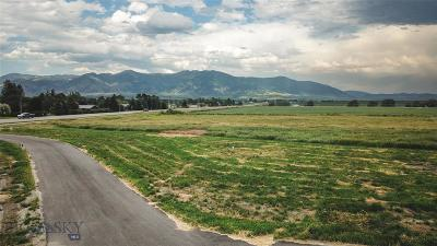 Residential Lots & Land For Sale: Lot 2 Pleasant Valley Minor Subdivision