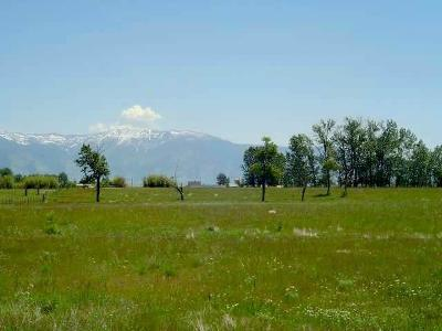 Residential Lots & Land For Sale: Tbd Frank Road