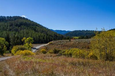 Residential Lots & Land For Sale: Tbd Trail Creek Road