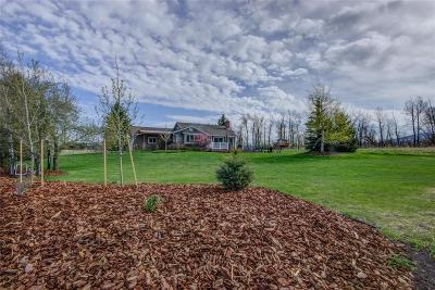 Bozeman Single Family Home For Sale: 8620 Silverberry Lane
