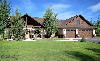 Bozeman Single Family Home For Sale: 342 Milky Way Drive