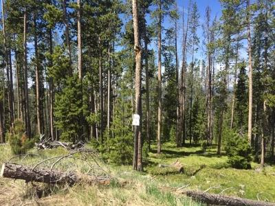 Residential Lots & Land For Sale: Lot 3 Minniehaha