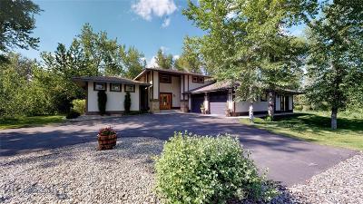 Bozeman Single Family Home For Sale: 271 Milky Way Drive