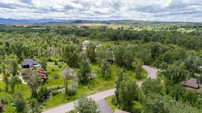 Residential Lots & Land For Sale: Tbd Milky Way Drive