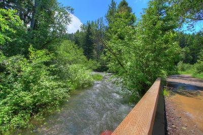 Residential Lots & Land For Sale: Tbd Black Bear Road