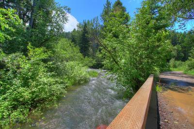 Bozeman Residential Lots & Land For Sale: Tbd Black Bear Road
