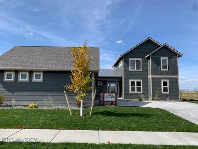 Bozeman Single Family Home For Sale: 1387 Ryun Sun