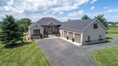 Bozeman Single Family Home For Sale: 203 Alton