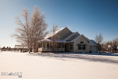 Belgrade Single Family Home For Sale: 4602 W Dry Creek