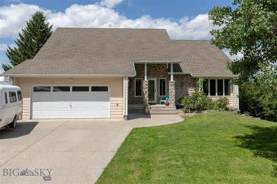 Single Family Home For Sale: 1425 Ash Drive