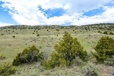 Residential Lots & Land For Sale: Lot 258 Tbd Crested Butte Road