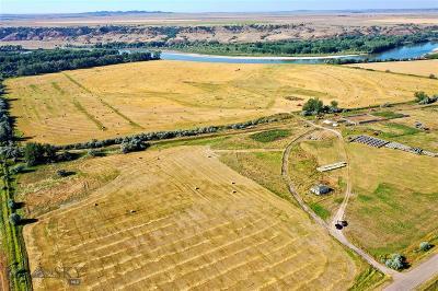 Farm For Sale: Tbd Cartersville Rd
