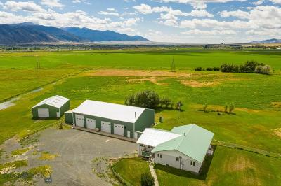 Farm For Sale: 32 Forcella Road