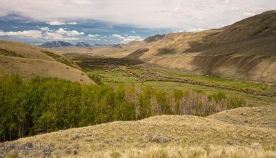 Lima Farm For Sale: 4000 Lima Dam Road