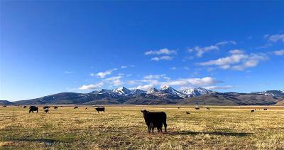 Lima Farm For Sale: Tbd Chute Canyon Ranch