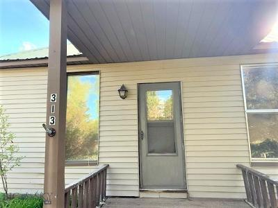 Lima Single Family Home For Sale: 313 S Main