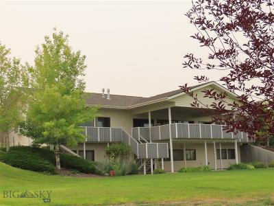 Dillon Single Family Home For Sale: 165 Badger Run
