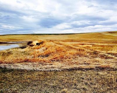 Cascade County, Lewis And Clark County, Teton County Farm For Sale: 31st Rd NW