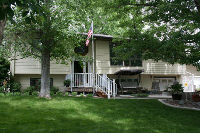Great Falls Single Family Home For Sale: 133 14 Ave S