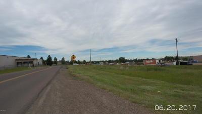 Great Falls, Black Eagle, Belt, Ulm Residential Lots & Land For Sale: lot 1 10th Ave N