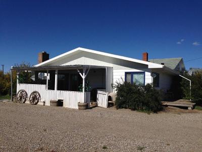 Brady Single Family Home For Sale: 115 Brady St S