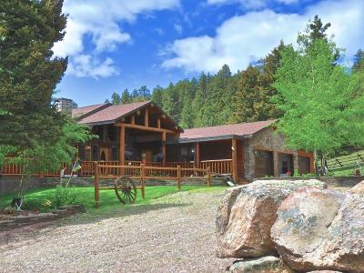 Single Family Home For Sale: 994 Mt Highway 141