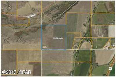 Farm For Sale: NHN County Roads 119/346