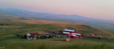 Cascade County, Lewis And Clark County, Teton County Farm For Sale: 645 Willow Creek Rd